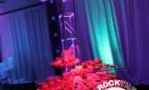 cleveland-wedding-lighting