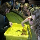 cleveland aquarium after prom interactive exhibits