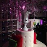 lighting creative party