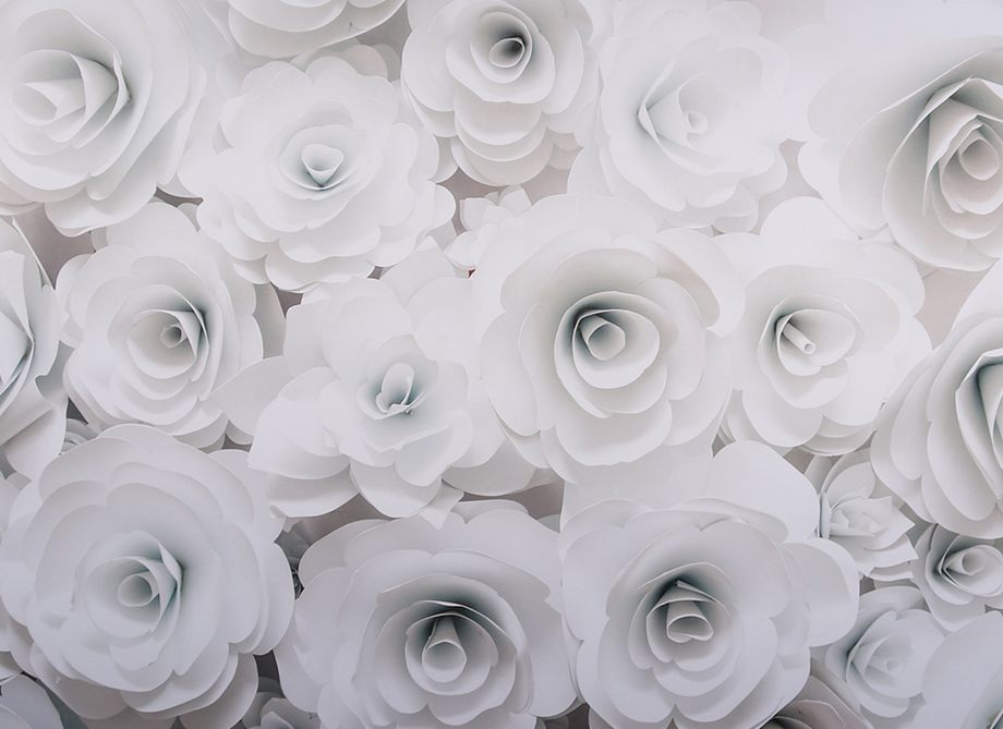 RTH Photo Booth Backdrops - 3D White Flowers