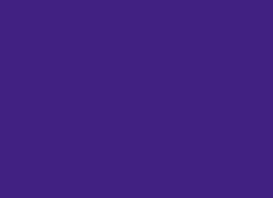 RTH Photo Booths - Photo Background - Solid Purple